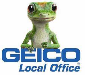 Gecko-on-Local-Office-small.jpg
